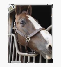 Booger the Horse iPad Case/Skin