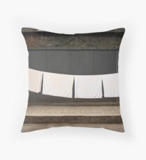 drying  out ! Throw Pillow