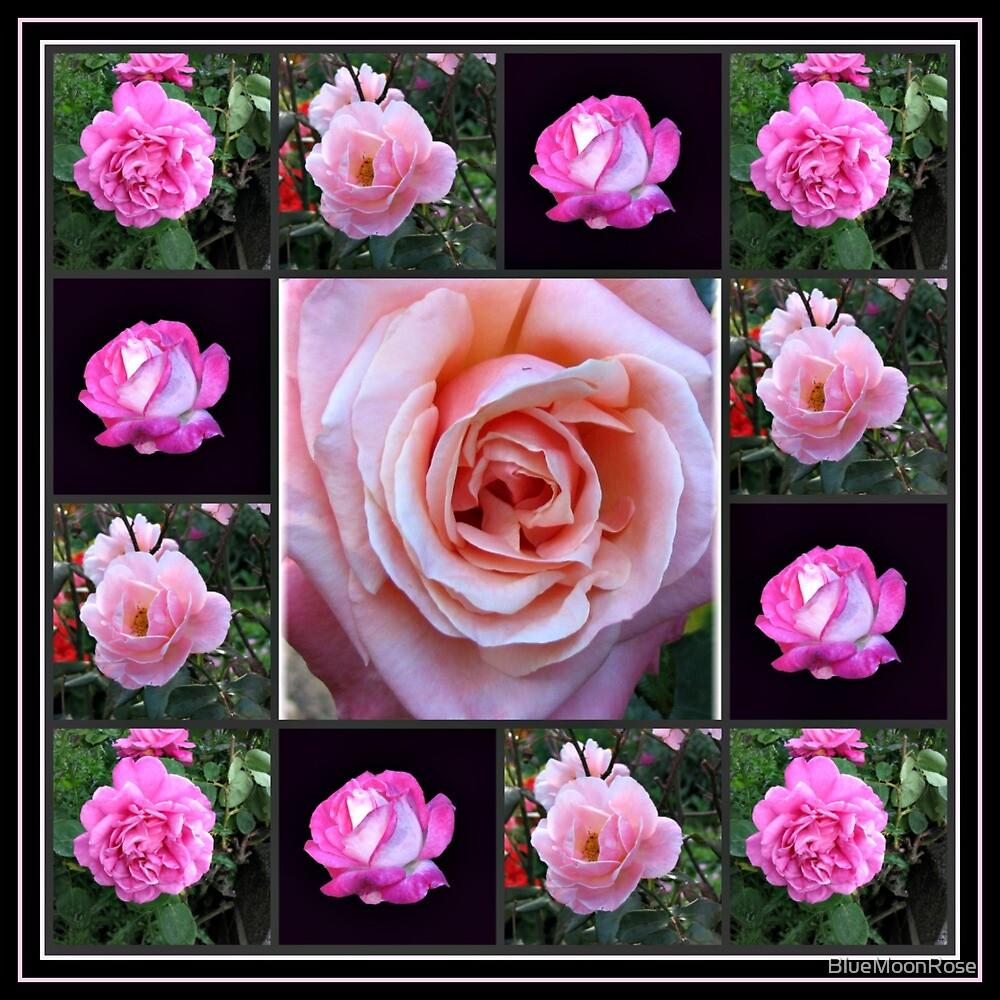 Rosa Rosen-Collage von BlueMoonRose