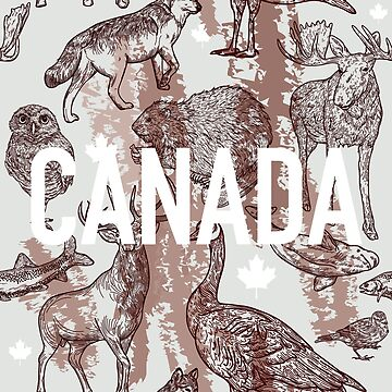 Animals of Canada by samposnick