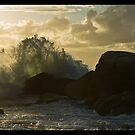The Wave, the Seagul, and the Sunset - Camps Bay Cape Town by NeilAlderney