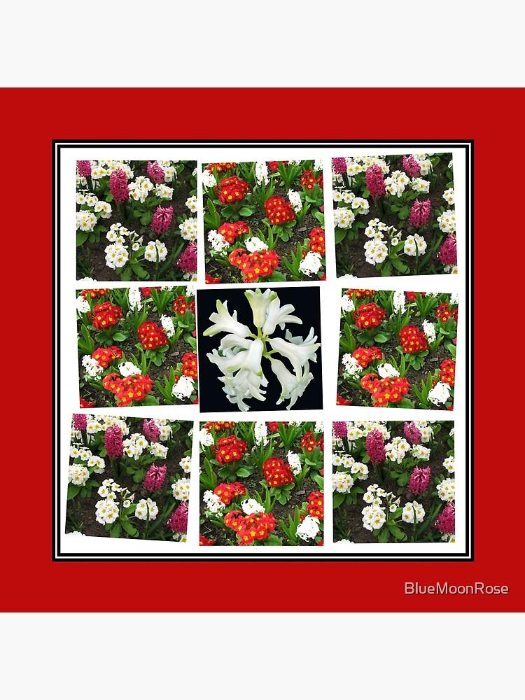 Hyacinths and Primroses Spring Collage von BlueMoonRose