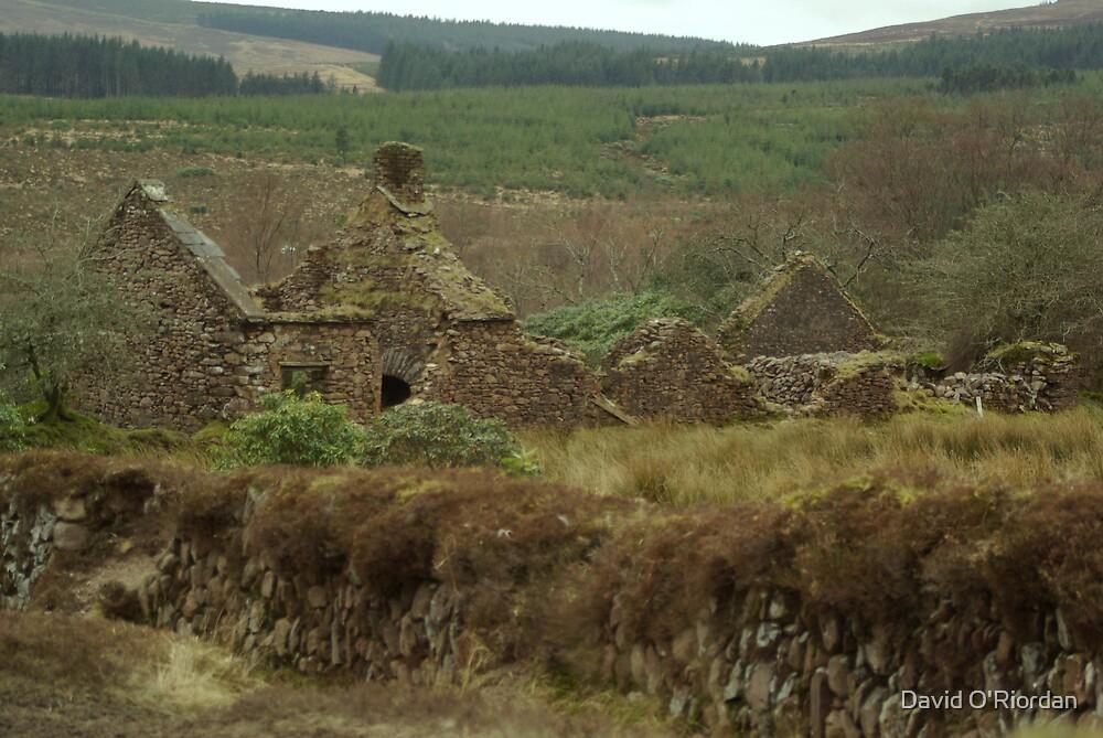 Old Irish Cottage by David O'Riordan