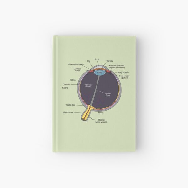 The Eye Has It Hardcover Journal