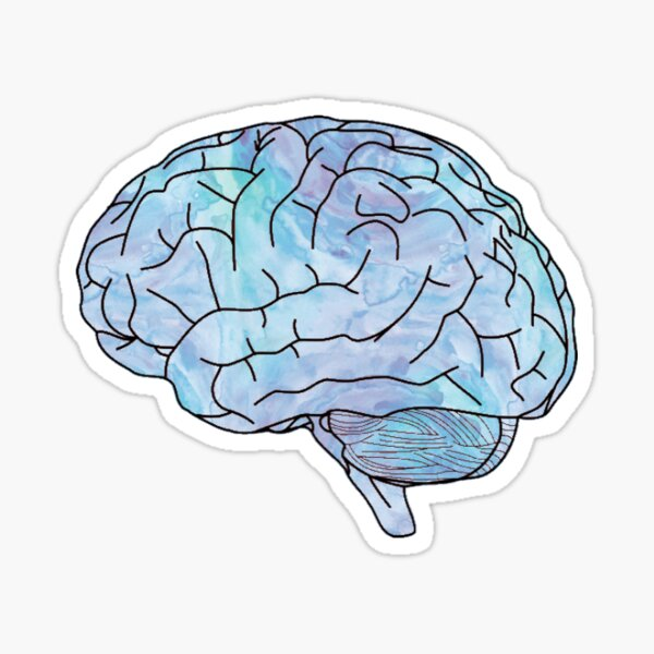 watercolor brain Sticker
