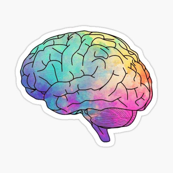 cerveau aquarelle Sticker