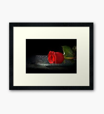 Rose On A Glass Tray Framed Print