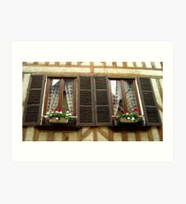 French windows, Auxerre, France Art Print