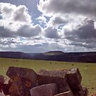 Harewood Dale View North York Moors by apple88
