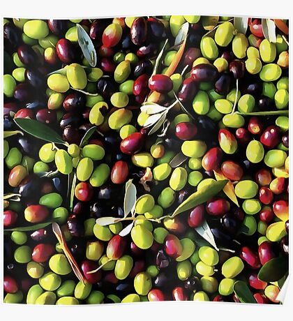 Organic Olives Poster