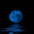 Blue Moon  by Jarede Schmetterer