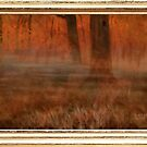 """Early Morning in Georgia"" ... with a canvas and framed presentation, for prints and products by Bob Hall©"