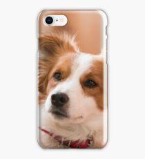 Baldur iPhone Case/Skin
