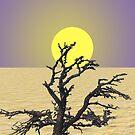 Dry by Dean Warwick