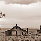 Abandoned Homestead by Dave Stephens