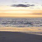 Florida Sunset Gulf of Mexico by Kristin Omdahl