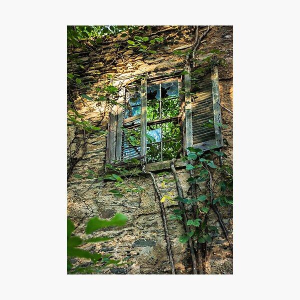 Window Pain Photographic Print
