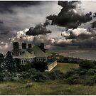 Four Chimneys On Cuttyhunk Island by Wayne King