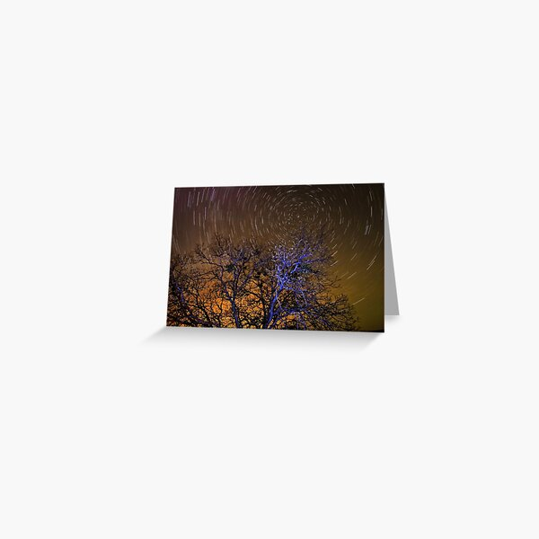 Tree Time Tunnel Greeting Card