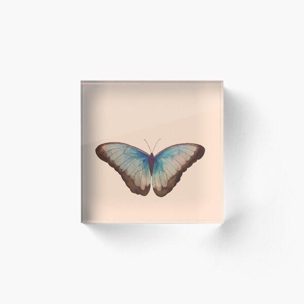Wings in Blue Acrylic Block