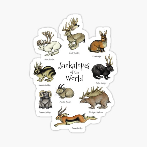 Jackalopes of the World Sticker