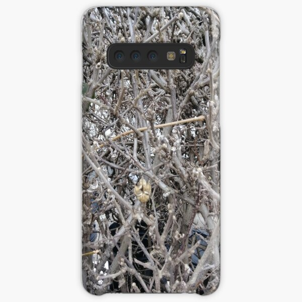 Twig, New York, Manhattan, Brooklyn, New York City, architecture, street, building, tree, car,   Samsung Galaxy Snap Case