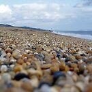 Beach Walk by elasticemma