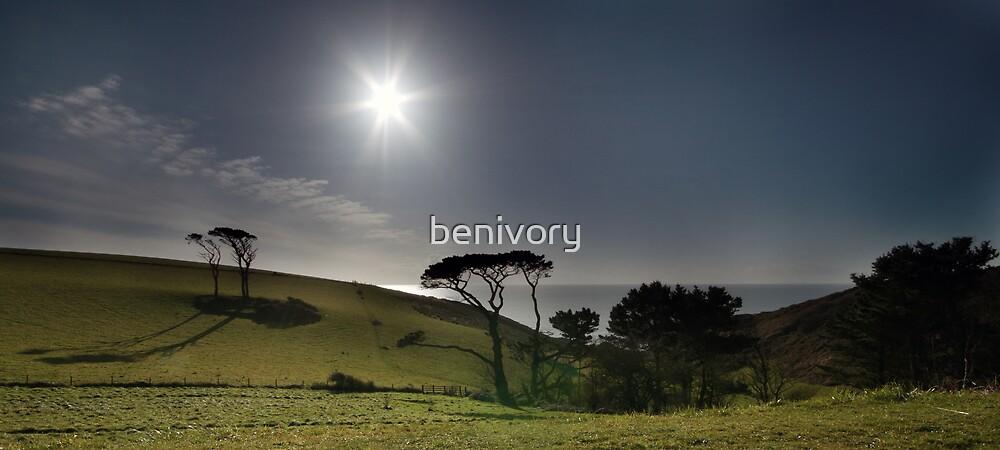 South Devon Coastline by benivory