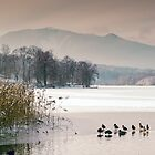 Winter Afternoon on Lake Staffel by Kasia-D