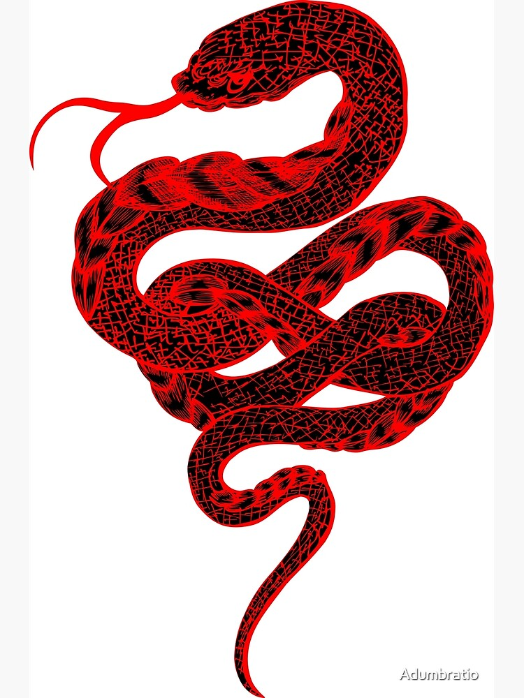 Red Snake by Adumbratio