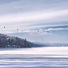 Winter Flight by Kasia-D