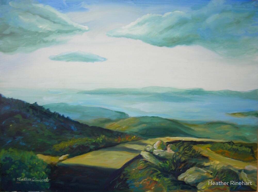 Overlook by Heather Rinehart