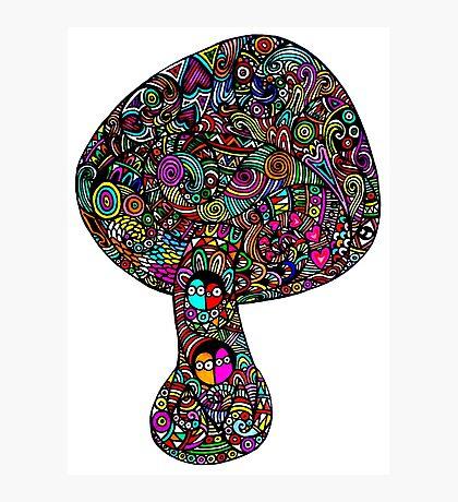 Mushroom Dreams Photographic Print