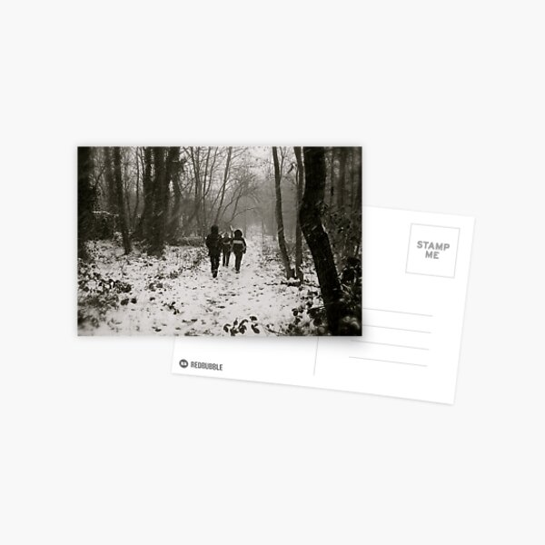 Blizzard in the Woods Postcard