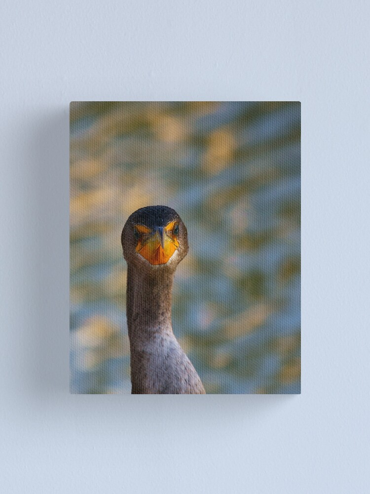 Alternate view of You think this is my best side....? Canvas Print