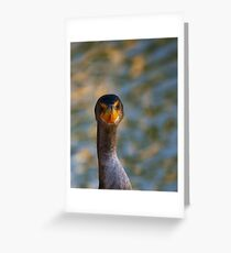 You think this is my best side....? Greeting Card