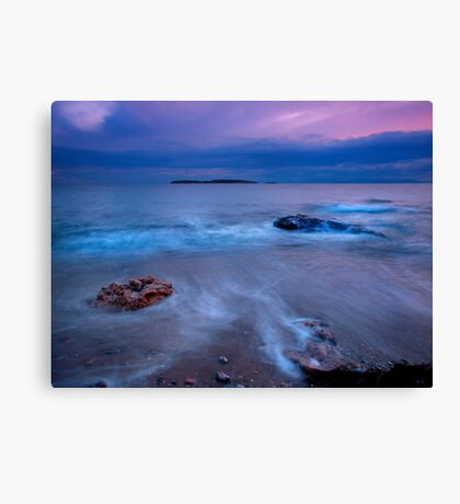 Winter sea Canvas Print