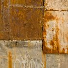 Rusted Panels by Virginia Maguire