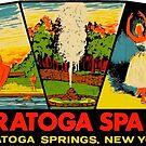 Saratoga Spa State Park New York Vintage Travel Decal by hilda74