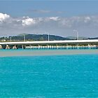 Forster-Tuncurry Bridge by Penny Smith
