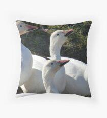 Snow Geese Fifteen Throw Pillow