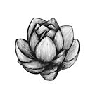 Lotus Flower by ogfx