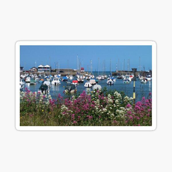 Harbour View Aberaeron Sticker