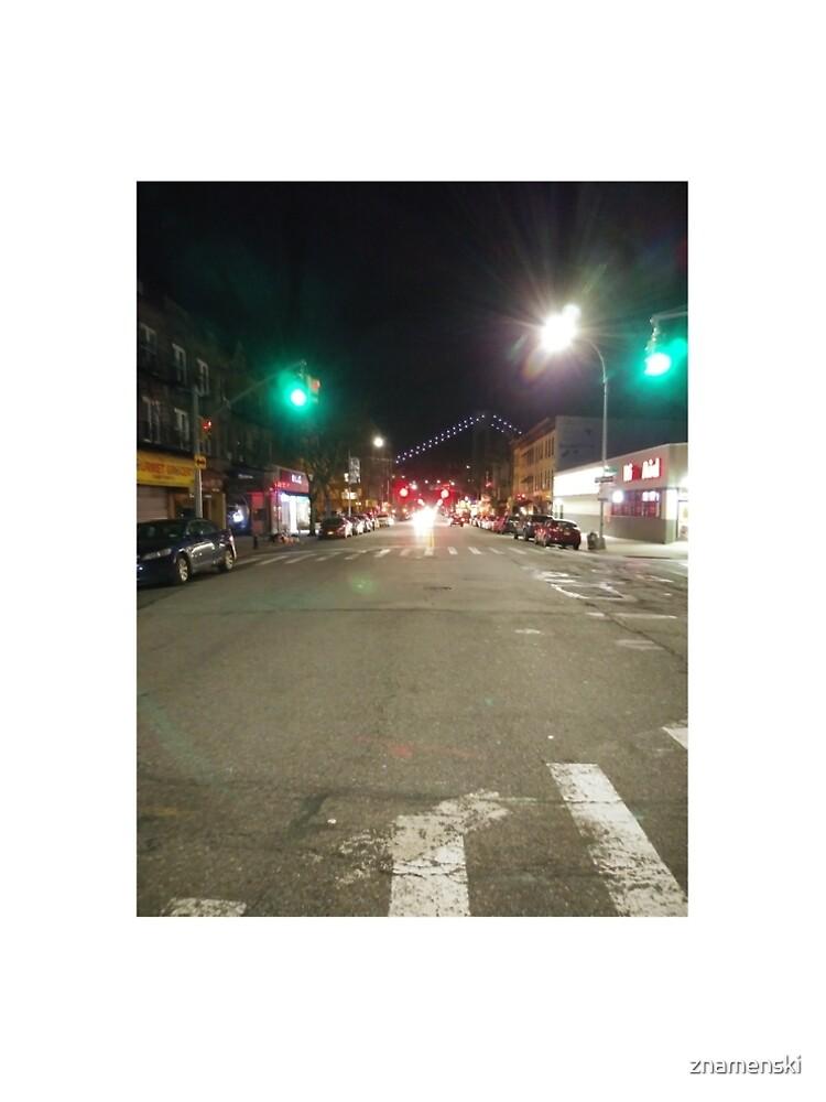 Street light, New York, Manhattan, Brooklyn, New York City, architecture, street, building, tree, car,   by znamenski