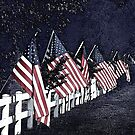American Flags all in a Row by Sherry Hallemeier