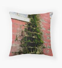 Mother Nature's Work:  Corrosion Throw Pillow