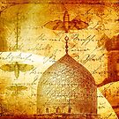 Moths and Mosques by Tammy Wetzel