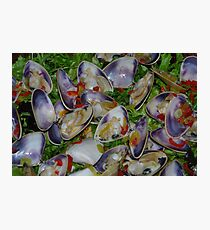 Cockles, lets eat Photographic Print