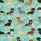 Dachshund easter spring dog breed pet costume easter bunny doxie by PetFriendly