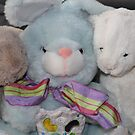 Three Easter Snuggly Bunnies by aussiebushstick